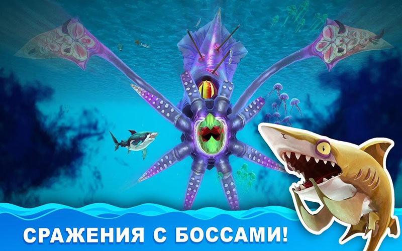 hungry shark акулы
